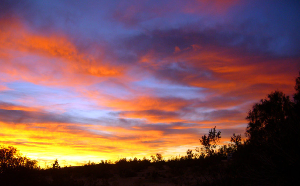 Sunrise in Joshua Tree Park by Jessie Eastland (Source: Wikimedia Commons)